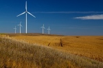 Corporate interest in green energy requires new thinking from electric utilities