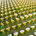 India One Solar Thermal Power Plant (photo Brahma Kumaris)