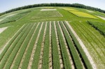 Great Lakes BioEnergy Research Center in 2008 (photo Open University)