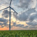 wind farm north of Corpus Christi Texas photo Drew Kolb