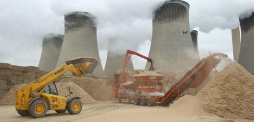 Biopower (part 3): what does the future hold?