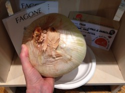 Slow Food slider