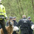 rwe lignite mining Hambach forest protest Germany