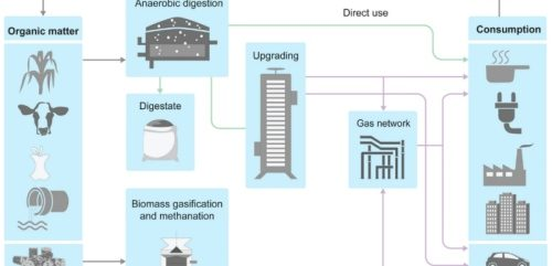 Biogas and Biomethane's untapped potential across the world