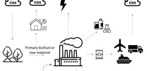 Bioenergy is the undervalued pillar of the clean energy transition